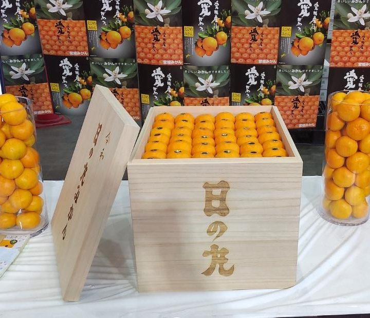 This crate of oranges sold for nearly $9,600 at an auction in Japan